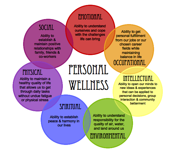 Wellness Wheel Online Therapy Client Testimonials for Mateja Petje Reference Endorsements